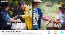 美团外卖青山计划晒两周年成绩单:在云南、甘肃扶持超800亩生态友好林